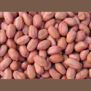 Raw Groundnuts (1 x 50kg per bag)-Rounds